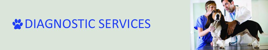 pet haven_diagnostics services 2 (1)